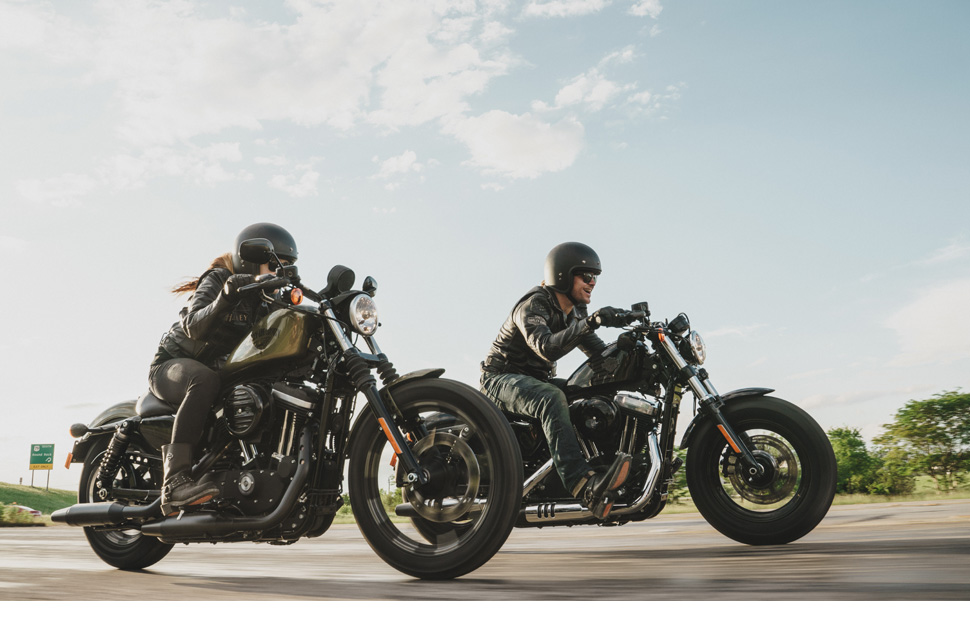 The Sportster Family